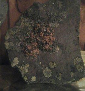 Камни аблицовачный срочн