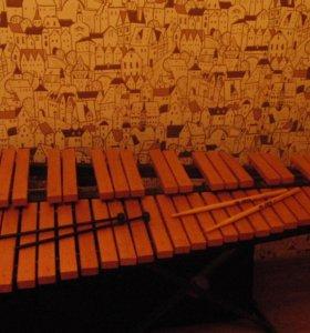Ксилофон деревянный для обучения в музыкальной школе