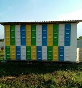 Павильон на 48 пчелосемей