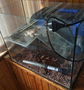 Аквариум для черепахи и обогреватель