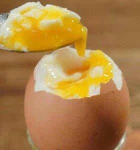 Продаю домашний яйцо,козье молоко и творог