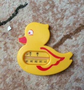 Градусник термометр