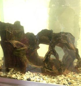 Декорация в аквариум