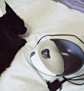 🐱Поилка для кошек 🐱