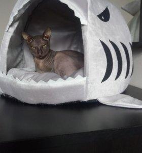 Домик акула для кота