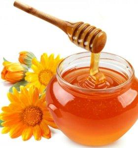 Мёд Алтайский 2,4 кг Разнотравье