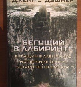 Книга Бегущий в лабиринте