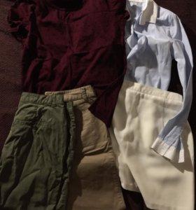 Футболка Рубашка штаны юбка Брюки