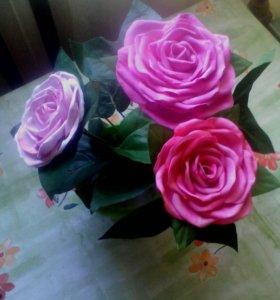 Розы в горшочке