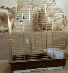 Продам срочно клетку для попугая