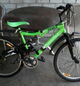 Велосипед горный Eurotex Caiman