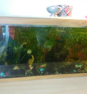 Аквариум с рыбками и устройствами