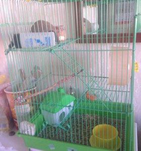 Клетка для маленьких грызунов