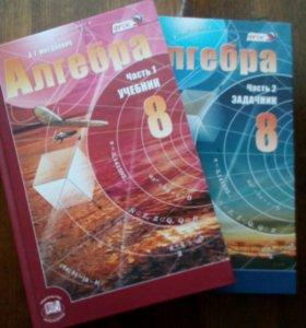 Учебник и задачник по алгебре( 8 класс)