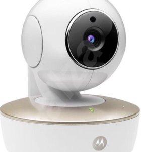 Видеоняня Новая Motorola