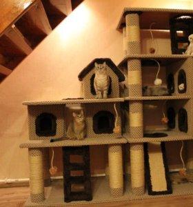 Гостиница для домашних животных (на время летних отпусков)