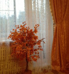 "Интерьерное дерево ""Клен"""
