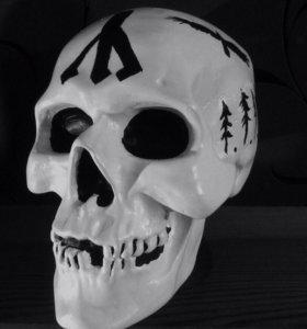 Анатомический череп