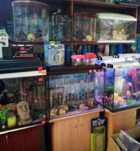Новый аквариум 120 литров и другие.