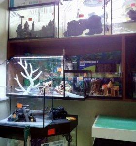 Новые аквариумы 20 литров и другие