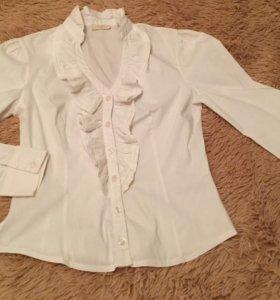 новая рубашка Shely