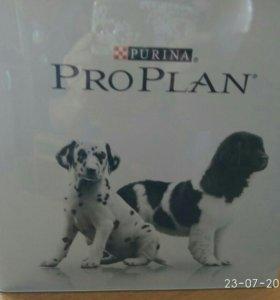 Корм для собак. ProPlan