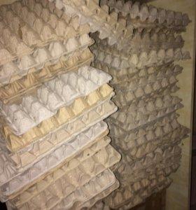Лотки под куриные яица