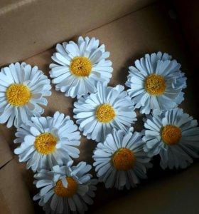 Цветы из фоамирана в наличии и на заказ