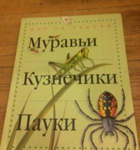 Разные энциклопедии