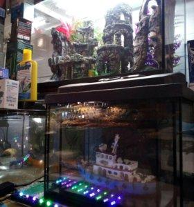 Новый 25 литровый аквариум и другие