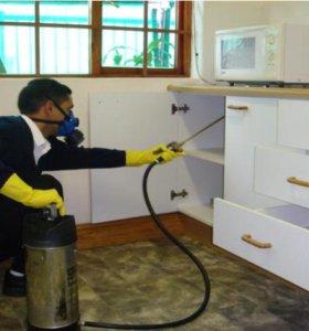 Уничтожение тараканов в квартире Новосибирск