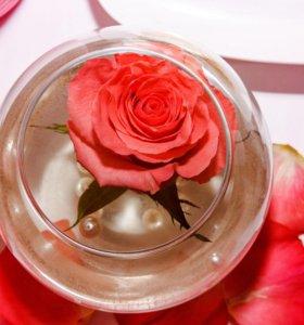 В аренду вазы для цветов