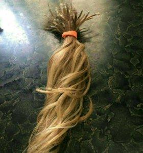 волосы на капсуле