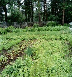Участок, 7.5 сот., сельхоз (снт или днп)