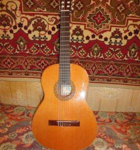 Классическая испанская гитара Francisco Esteve 1GR01(1)