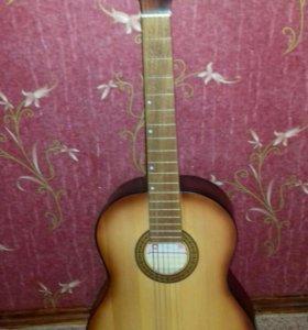 ГитараАмистар М-31