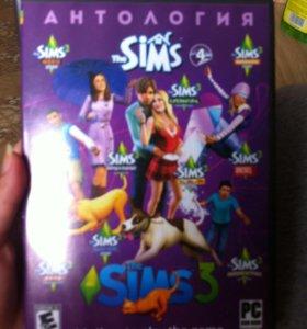 Sims.