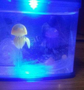Настольный мини-аквариум orient с насосом и подсве