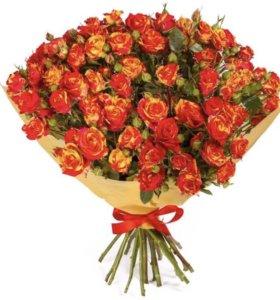 Срезанные Розы Фиеста Баблс напрямую из теплиц