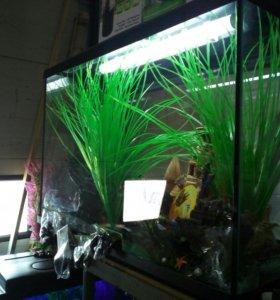 Новый 60 литровый аквариум и другие