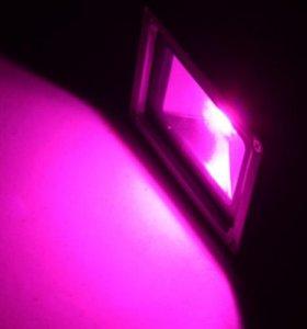 LED Прожектор 50W Grow Lights Full Spectrum