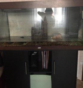 Juwel аквариум 300л с родной тумбой