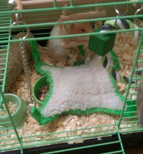 Качелька (гамак) для хомячков, грызунов