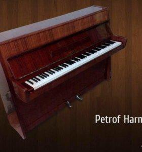Фортепиано Petrof Harmonie, Чехия