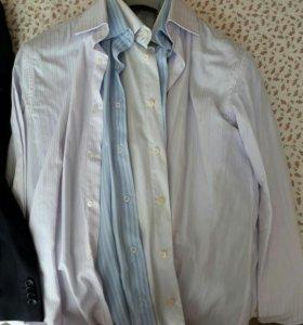 Рубашки, брюки, пиджак