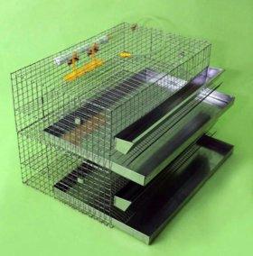 Клетки для перепелов