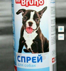 Спрей для приучения собак к туалету и воротник