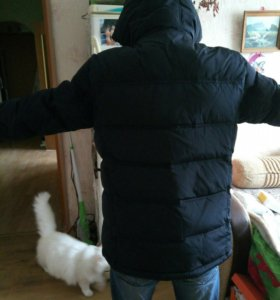 Куртка зимняя 46 icebear