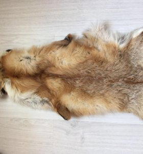 Шкура лисицы 🦊