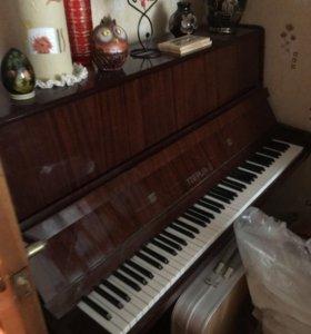 Музыкальный инструмент фортепиано Тверца